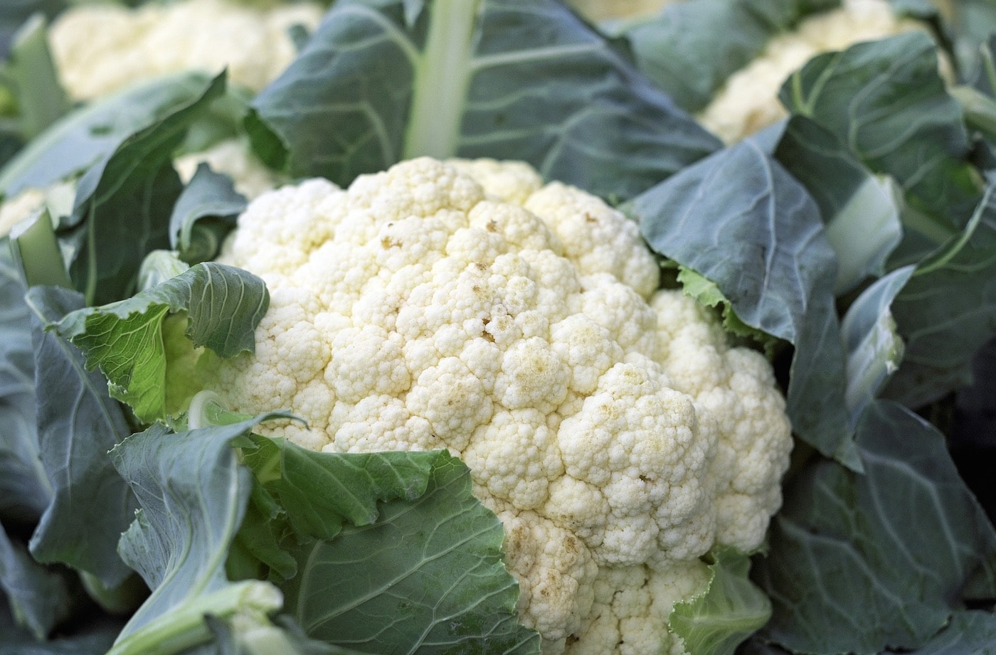 Best cauliflower recipe: how to cook sweet and sour cauliflower